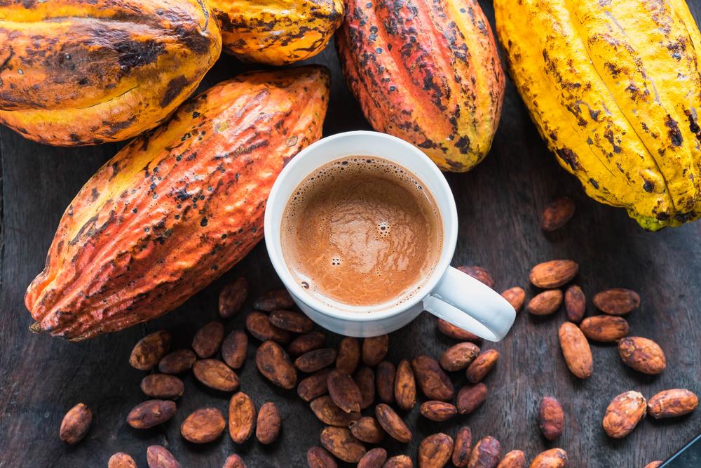 cacao thơm ngon bổ dưỡng